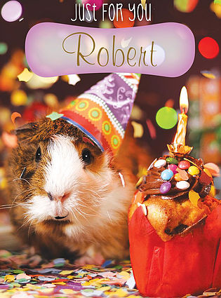 A cute Birthday Card, personalised and showing a picture of a guinea pig wearing a tiny party hat, next to a small pastry with chocolate topping and a lit candle on the top of it