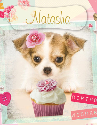 A cute Birthday Card, showing a puppy staring a tasty cupcake, wearing a small flower on the head