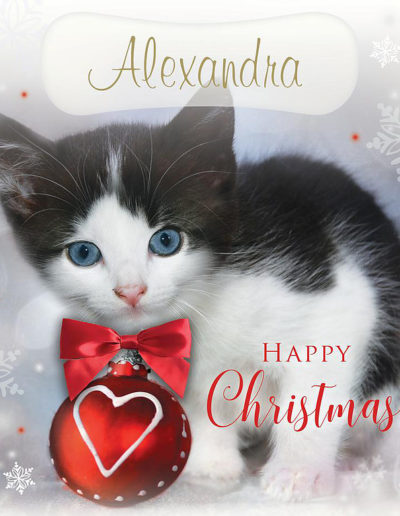 A Personalised Christmas Card, showing a cute black and white kitten with blue eyes close to an heart-shaped Christmas decoration